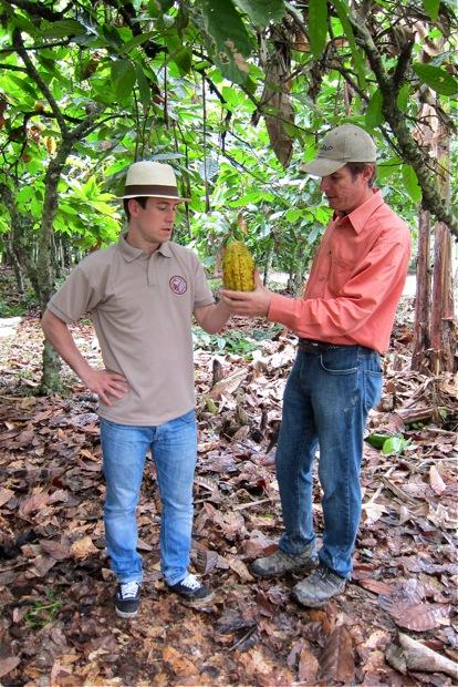 Kevin Kugel und Vicente Norero mit Criollo Kakao